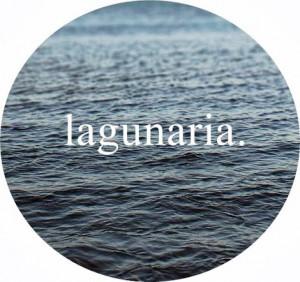 Logo_lagunaria